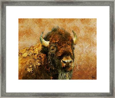 King Of The Plains Framed Print by Roger D Hale