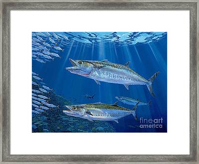 Kingfish Reef Framed Print by Carey Chen