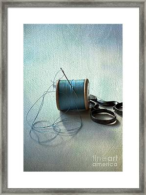 Kingfisher Blue Framed Print by Jan Bickerton
