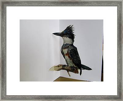 Kingfisher Pop Up Card Framed Print by Alfred Ng