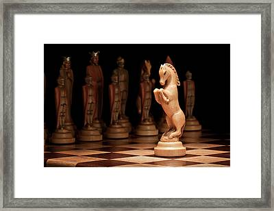 King's Court II Framed Print by Tom Mc Nemar