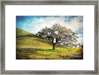 Kiss The Earth Framed Print by Ellen Cotton