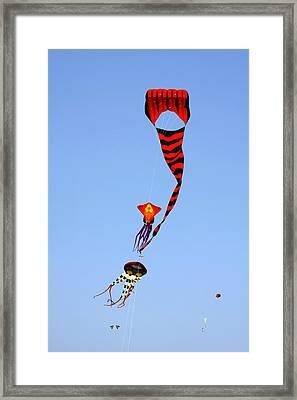 Kites Over Baja California Framed Print by Christine Till