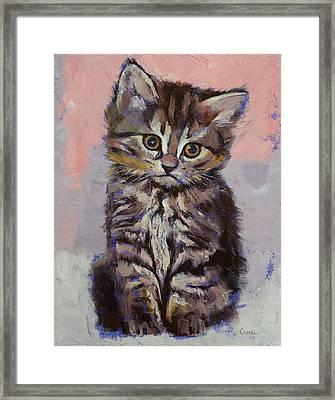 Kitten Framed Print by Michael Creese