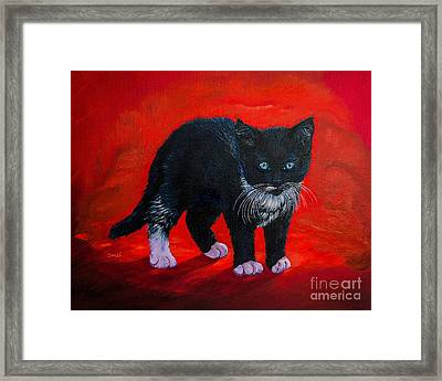 Kitten Framed Print by Zina Stromberg