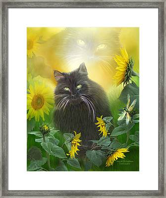 Kitty In The Sunflowers Framed Print by Carol Cavalaris