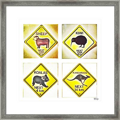 Kiwi Aussi Road Signs Framed Print by HELGE Art Gallery