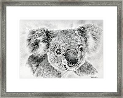 Koala Newport Bridge Gloria Framed Print by Remrov Vormer