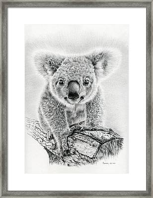 Koala Oxley Twinkles Framed Print by Remrov Vormer