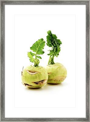 Kohlrabi Framed Print by Fabrizio Troiani