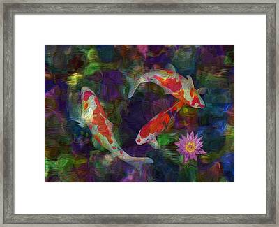 Koi Framed Print by Jack Zulli