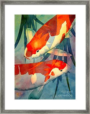 Koi Love Framed Print by Robert Hooper