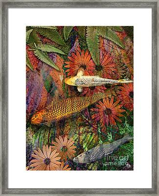 Kona Kurry Framed Print by Christopher Beikmann