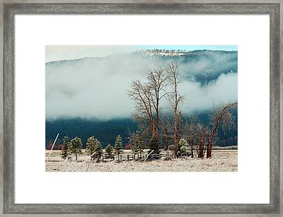 Kootenai Frost Framed Print by Annie Pflueger