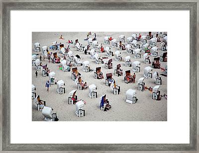 L \'alveare Framed Print by Massimo Della Latta