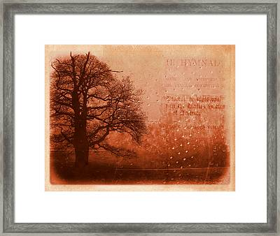 L Arbre De Vie - S33rd02 Framed Print by Variance Collections
