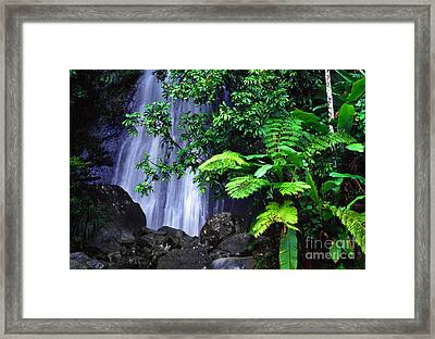 La Coca Falls Framed Print by Thomas R Fletcher