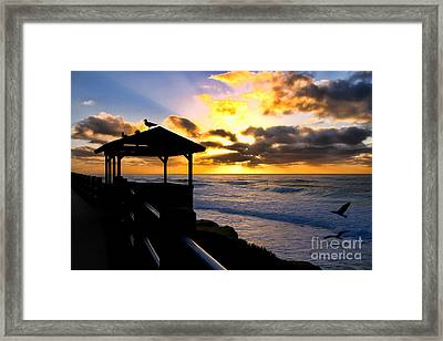 La Jolla At Sunset By Diana Sainz Framed Print by Diana Sainz