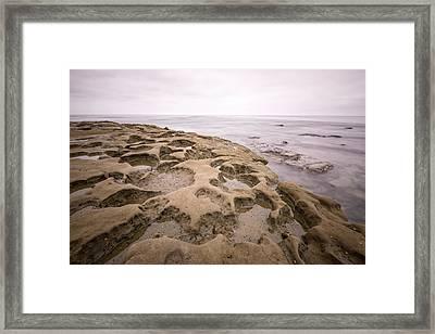 La Jolla Tide Pools Framed Print by Tanya Harrison