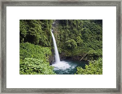 La Paz Waterfall Costa Rica Framed Print by Konrad Wothe