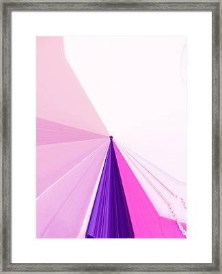 La Vie En Rose 05  3.23.14 Framed Print by Rozita Fogelman