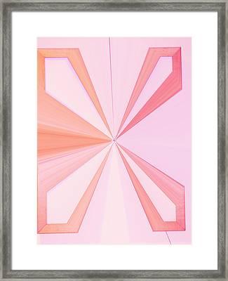 La Vie En Rose 11   3.23.14 Framed Print by Rozita Fogelman