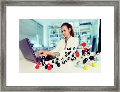 Lab Assistant Using A Laptop Framed Print by Wladimir Bulgar