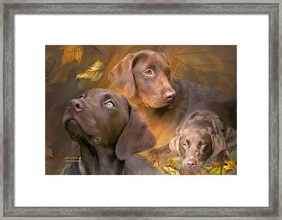 Lab In Autumn Framed Print by Carol Cavalaris