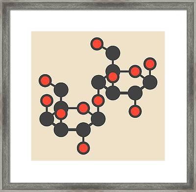 Lactose Milk Sugar Molecule Framed Print by Molekuul