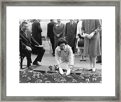 Lady Bird Johnson Planting Framed Print by Underwood Archives