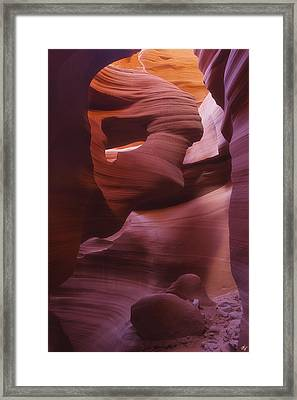Lady In The Wind Framed Print by Peter Coskun