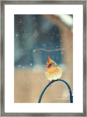 Lady In Waiting Framed Print by Kay Pickens