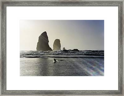 Lady Jessica Of The Great Northwest Framed Print by Susan Molnar