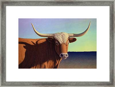 Lady Longhorn Framed Print by James W Johnson