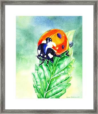 Ladybug Ladybug Where Is Your Home Framed Print by Irina Sztukowski