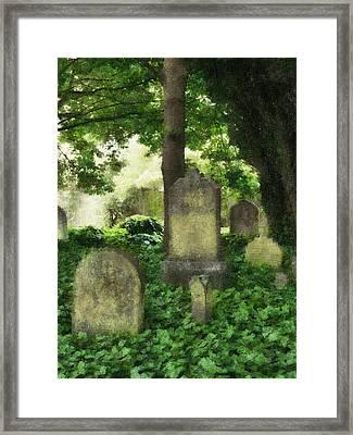 Lain Under An Ivy Blanket Framed Print by Steve Taylor