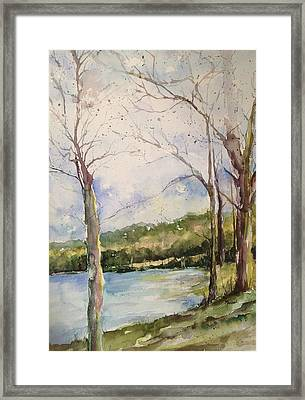 Lake #1 North Little Rock Framed Print by Robin Miller-Bookhout
