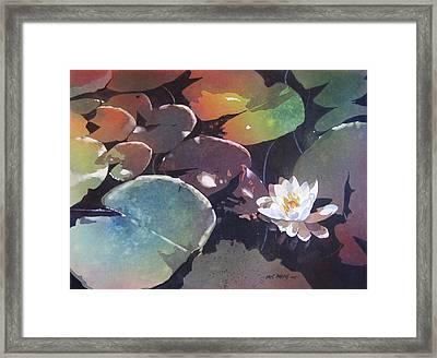Lake Garden Framed Print by Kris Parins