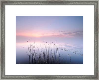 Lake Framed Print by Keller