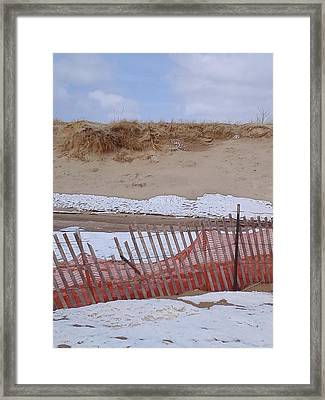 Spring Beach  Framed Print by Erica  Darknell