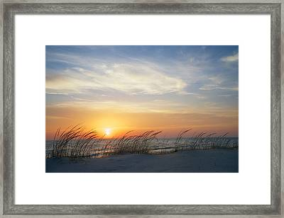 Lake Michigan Sunset With Dune Grass Framed Print by Mary Lee Dereske