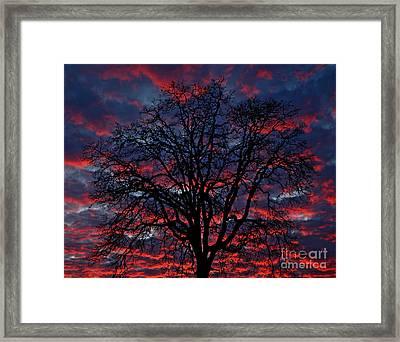 Lake Oswego Sunset Framed Print by Nick  Boren
