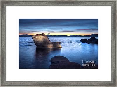 Lake Tahoe Bonsai Rock Framed Print by Dianne Phelps