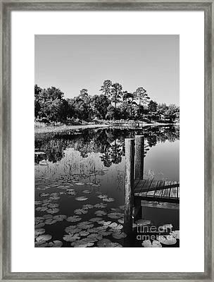 Lakes Of Deland Framed Print by Deborah Benoit