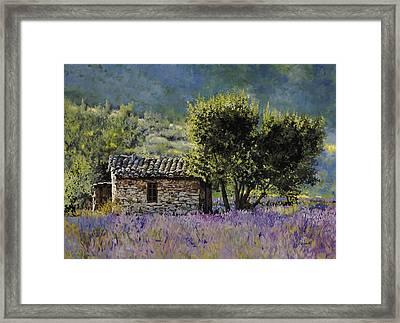 Lala Vanda Framed Print by Guido Borelli