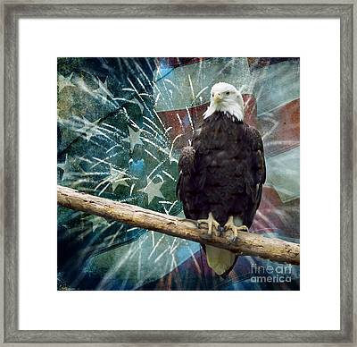 Land Of The Free Framed Print by Terry Weaver