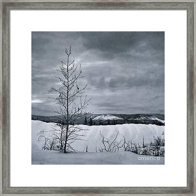 Land Shapes 15 Framed Print by Priska Wettstein