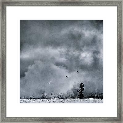Land Shapes 5 Framed Print by Priska Wettstein
