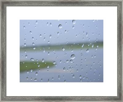 Landed Framed Print by Natalie Lizza