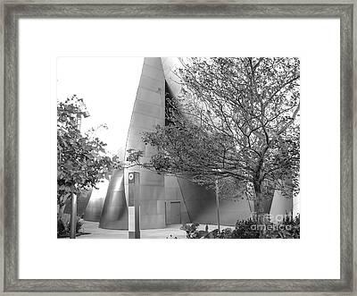 Landscape A10q Los Angeles Framed Print by Otri Park